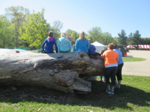 A favorite spot for nearly all of the kids -- climbing in and on the big tree stump!